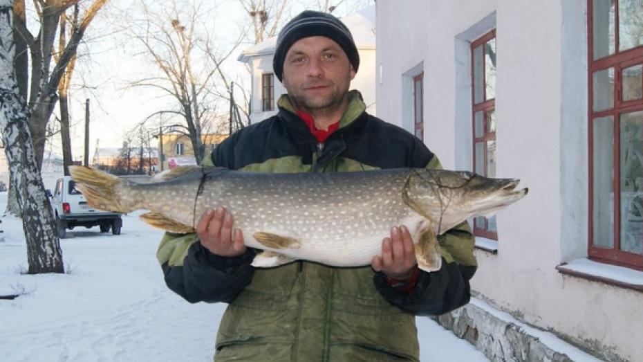 Поворинец Андрей Лодяной поймал в Хопре восьмикилограммовую щуку