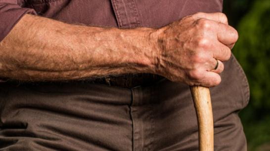 Пропавшего 78-летнего воронежца нашли живым