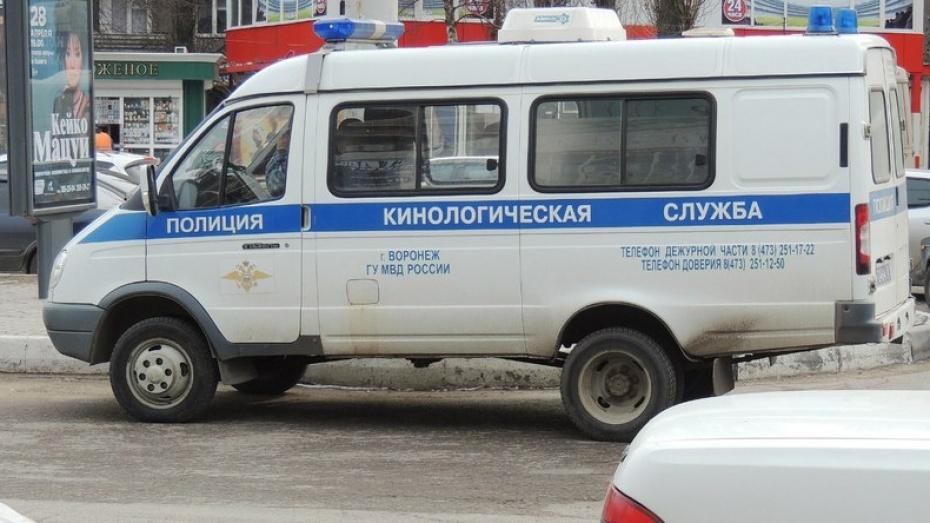 Воронежцы вызвали спасателей к зданию Росреестра из-за бесхозного пакета
