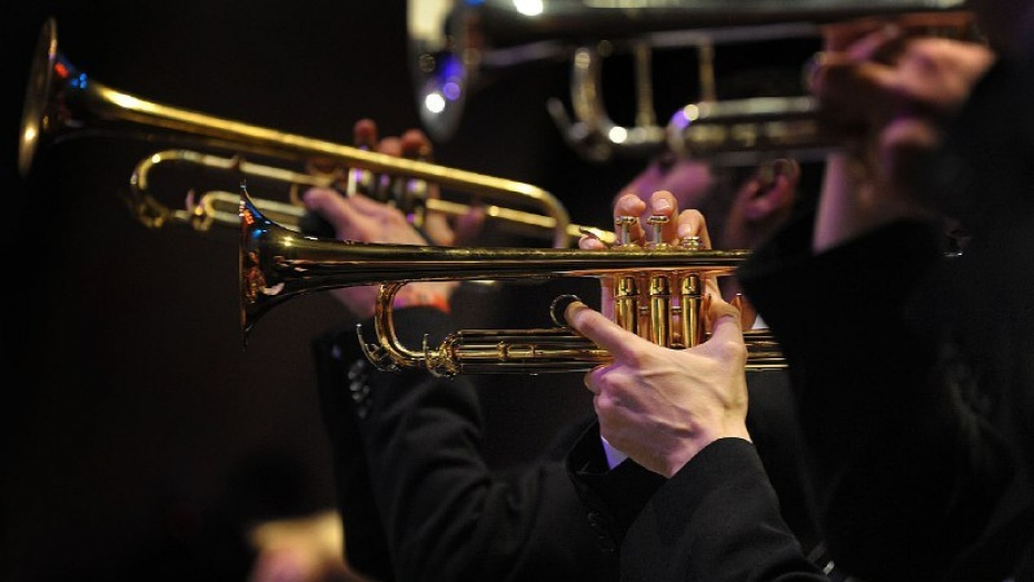 Луганский симфонический оркестр даст концерт в Воронеже