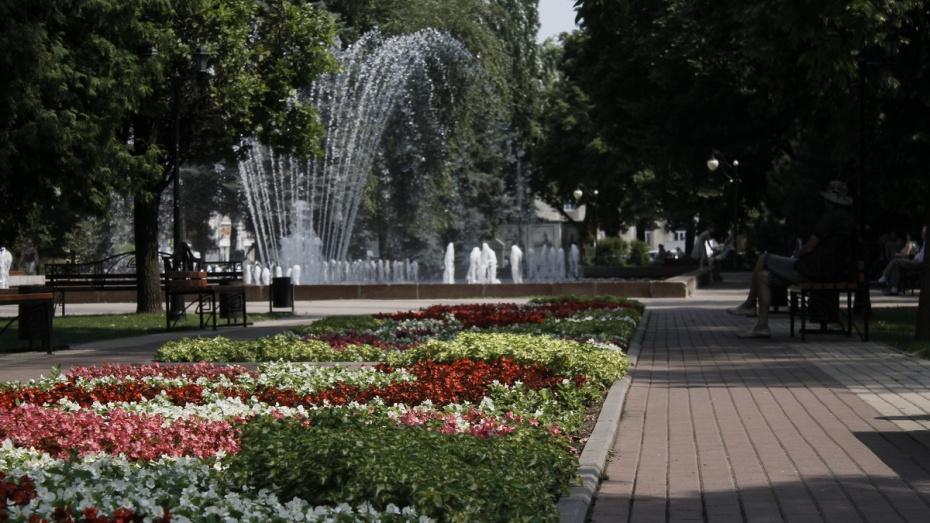 Мэрия Воронежа рассказала о планах по благоустройству скверов до конца 2018 года