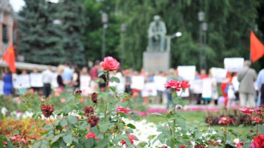 В Воронеже на обустройство цветников и газонов потратят до 22,5 млн рублей