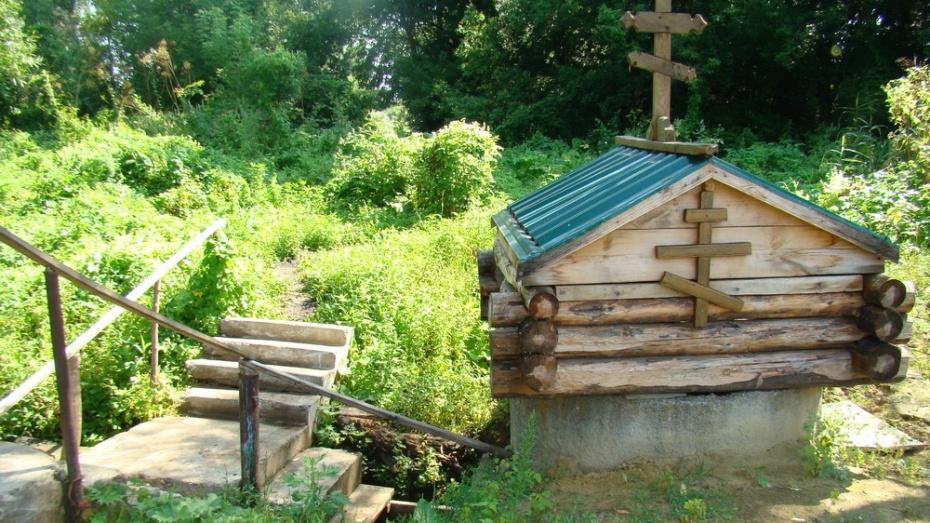 В хохольском селе Гремячье прошла экологическая акция «Чистые родники»