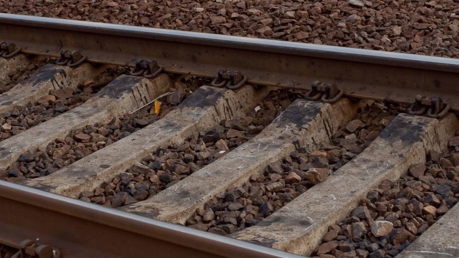 ВВоронежской области пассажирский поезд насмерть сбил пенсионерку