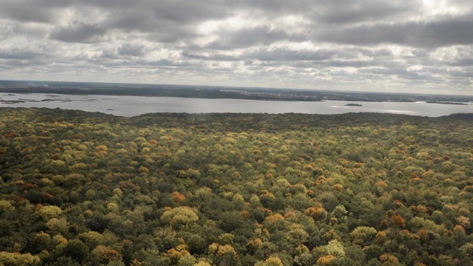 Ученые предложили создать в Воронеже национальный парк