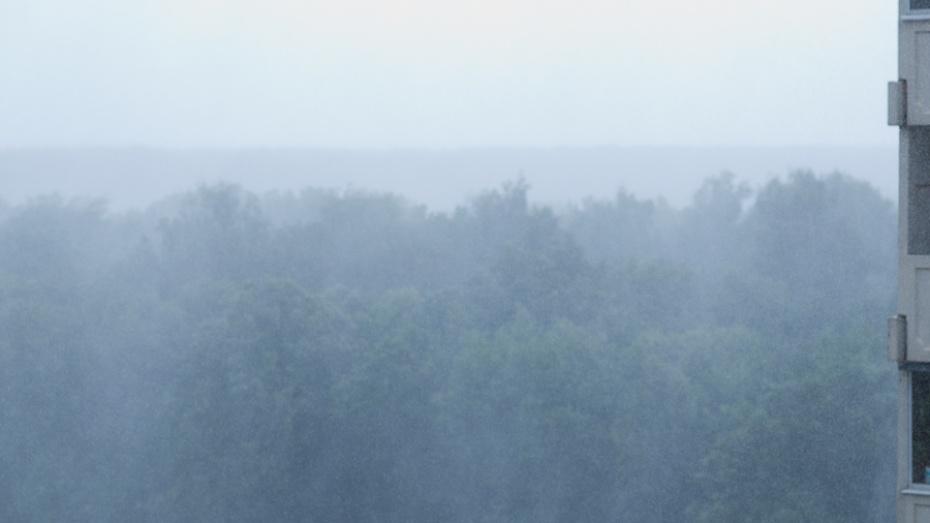 Сегодня метеорологи обещают в Воронежской области жару, грозу и град
