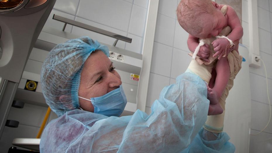 Во время всеобщей самоизоляции в Воронеже родились 303 ребенка