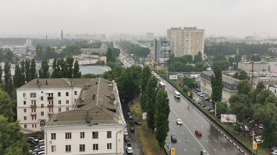 Дожди в Воронеже будут идти всю неделю