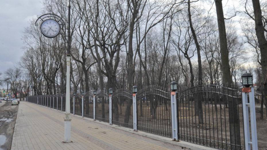 Власти запустили опрос о благоустройстве Бринкманского сада в Воронеже