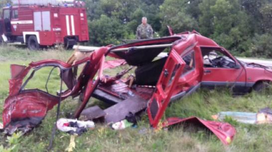 В ДТП с большегрузом в Воронежской области погибла семья с 2-летним ребенком