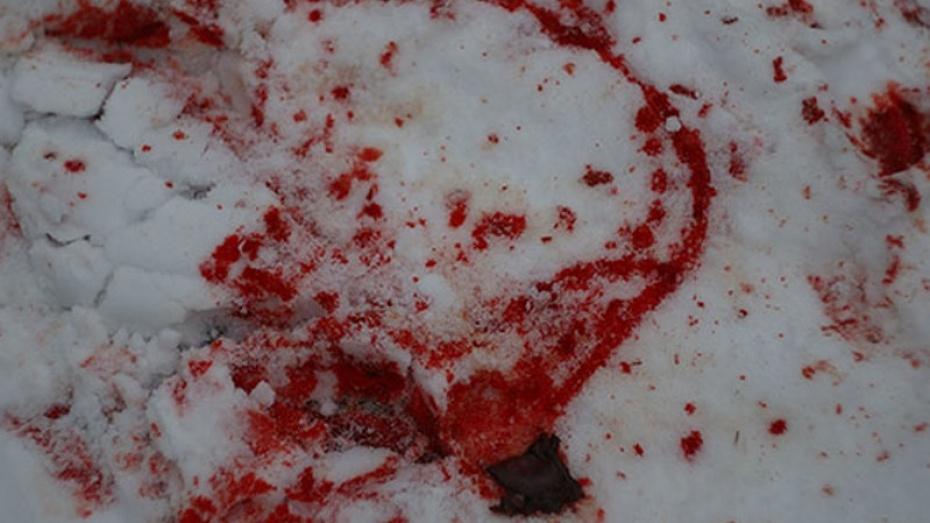 Сегодня в результате столкновения «Мазды» и «Мицубиси» в Аннинском районе погибло три человека