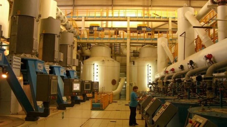 На «Ольховатском сахарном комбинате» запущена линия по производству бетаина