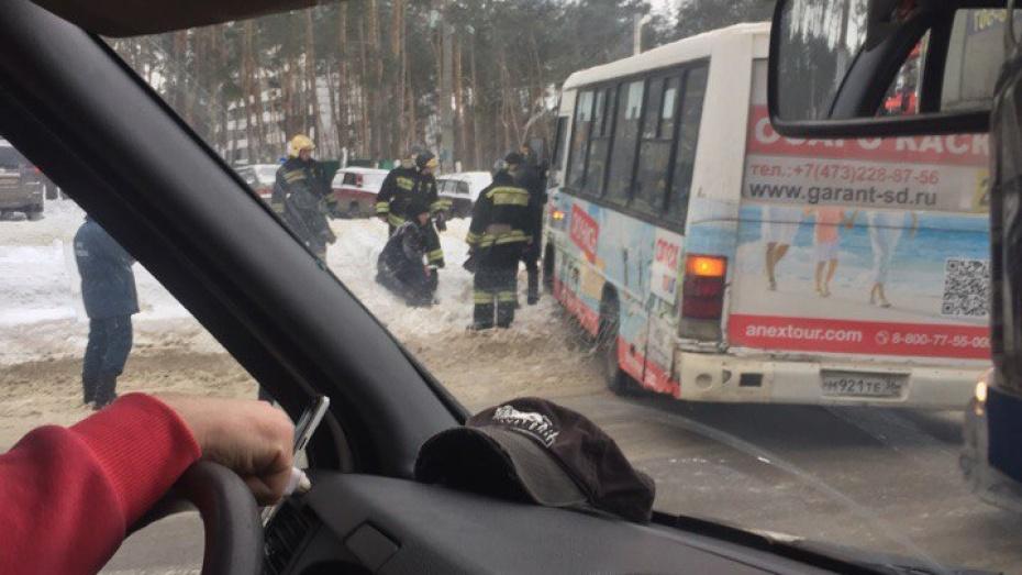 ВВоронеже под колеса маршрутного «ПАЗа» попали два пешехода