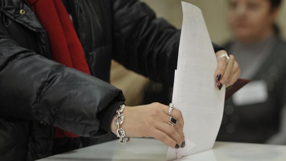 В Воронеже для обеспечения честных выборов привлекут волонтеров