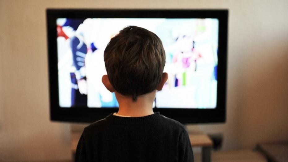 В Аннинском районе многодетная мать украла телевизор для детей