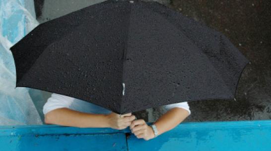 В нерабочие майские дни воронежцев ждут дожди и грозы