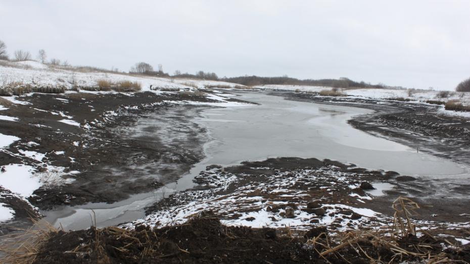 Жители села в Воронежской области восстановили обмелевший пруд