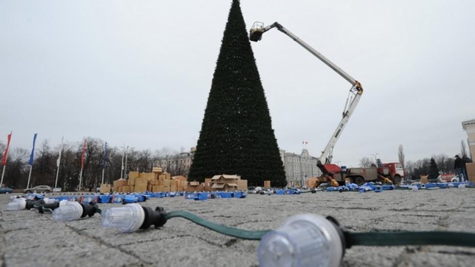 Главную елку Воронежской области охватит пламя