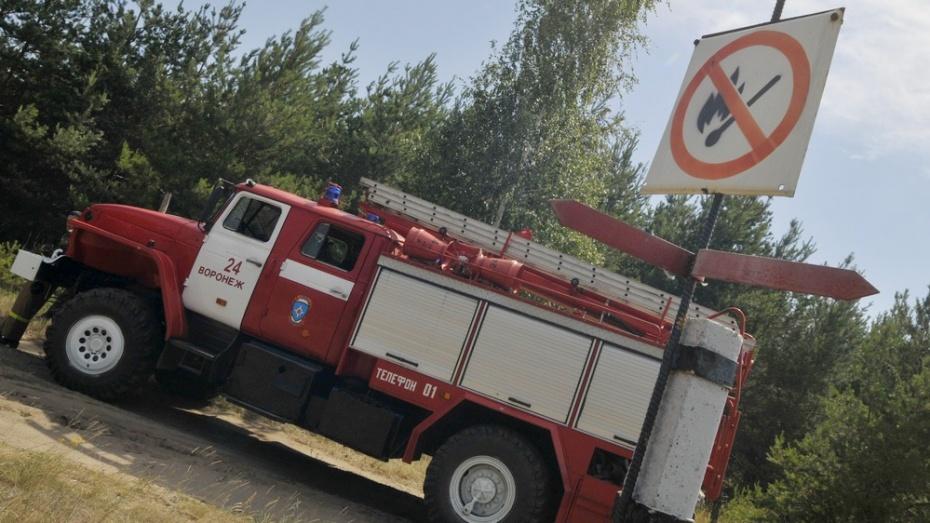 Спасатели установили высший класс пожароопасности в Борисоглебске