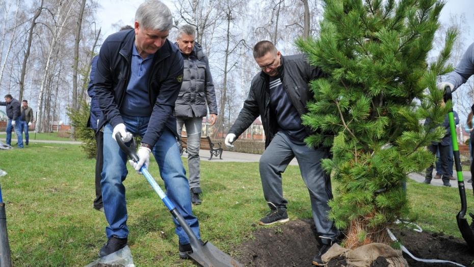 Александр Гусев высадил деревья в парке Дворца Ольденбургских под Воронежем