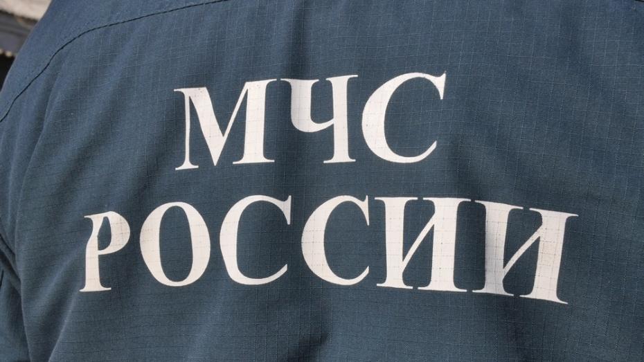 В ДТП в Павловском районе получили травмы 4 человека