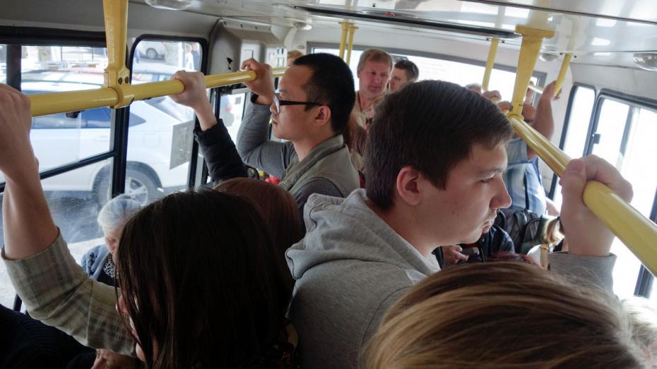 В Воронеже сезонные автобусные маршруты заработают с 13 апреля