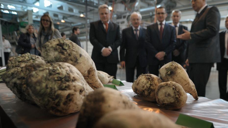 Воронежская область вошла в число пилотных проектов по развитию органического производства