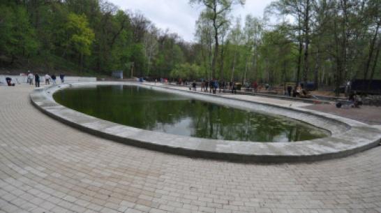 В Центральном парке Воронежа пройдет большой спортивный фестиваль