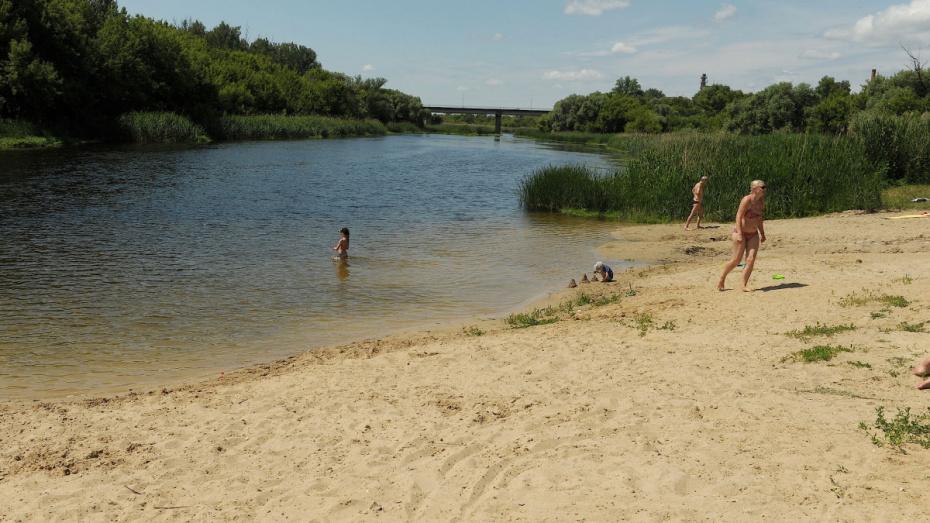 В Воронежской области на пляже для пришкольного лагеря нашли нарушения