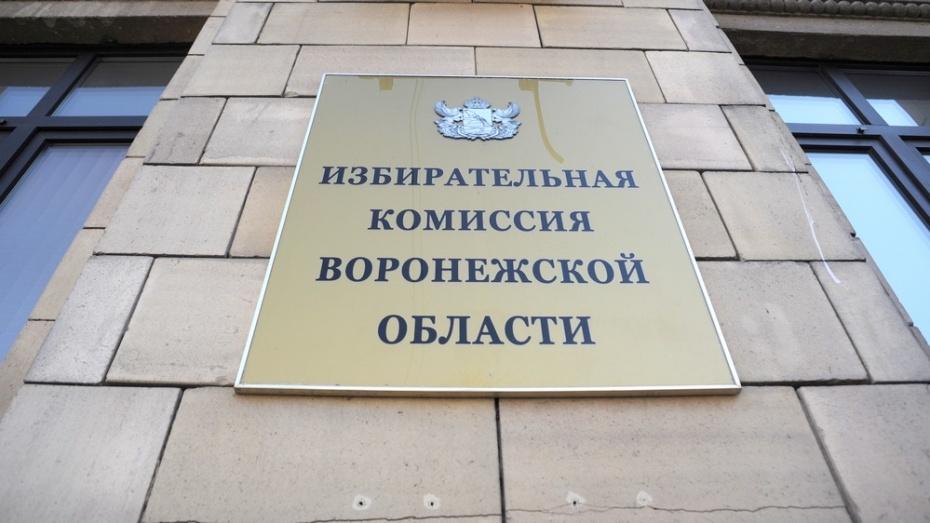 Избирком принял документы у трех первых самовыдвиженцев в Воронежскую облдуму