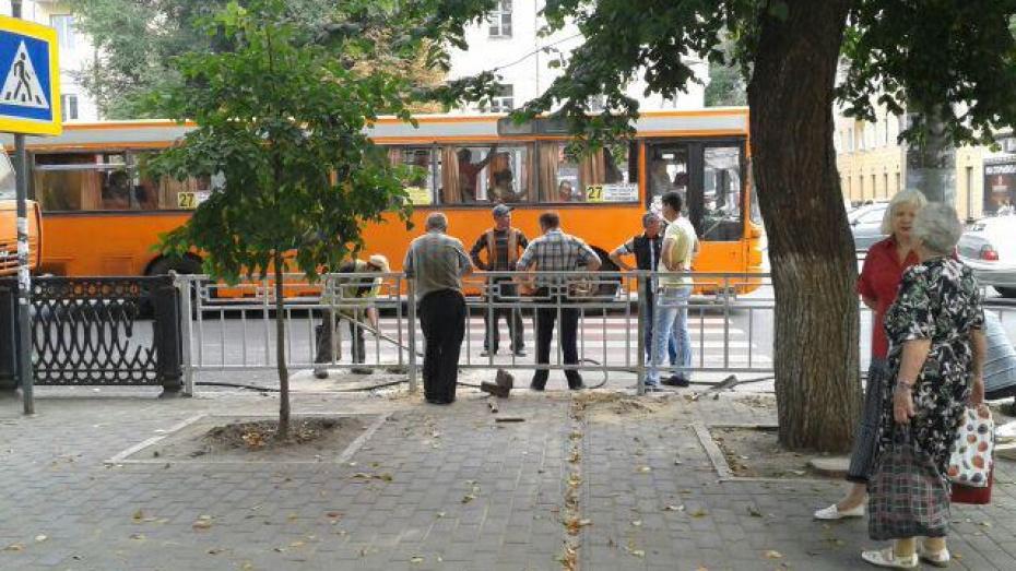 В Воронеже закрыли пешеходный переход на улице Плехановской