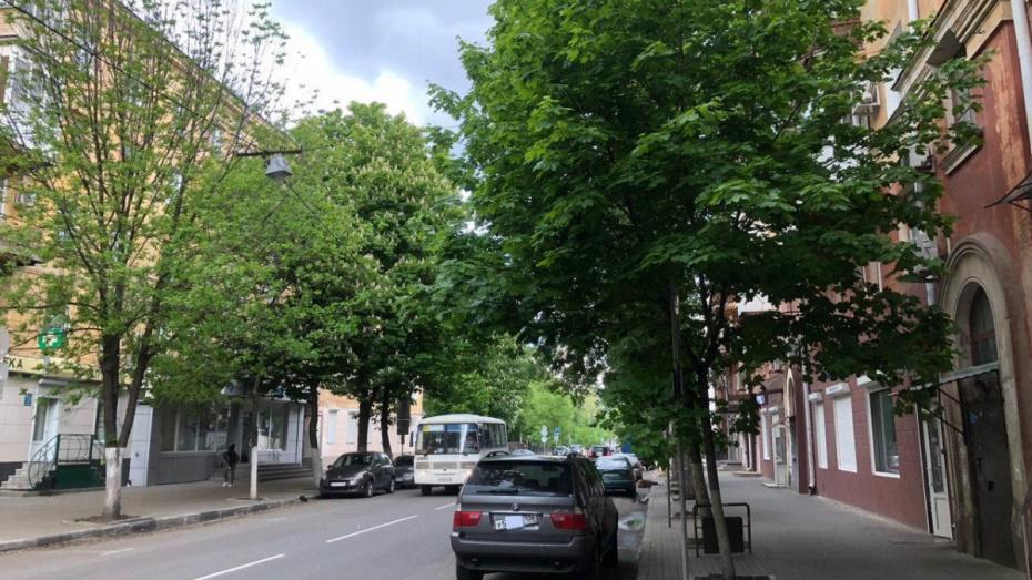 В Воронеже после долгого перерыва начали работать платные парковки