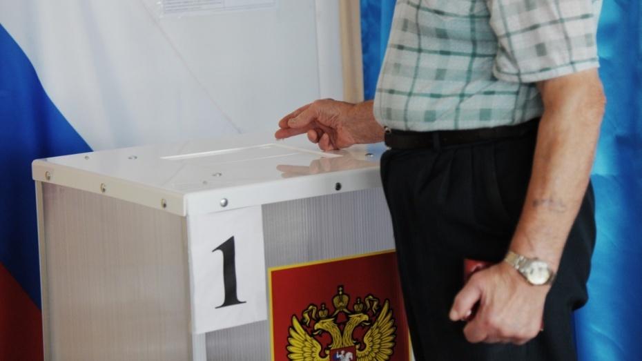 Камеры на выборах в Воронеже заработают на 406 избирательных участках