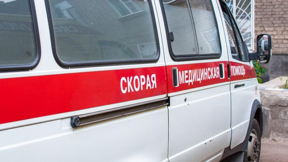 ВВоронежской области микроавтобус врезался в фургон: умер пассажир