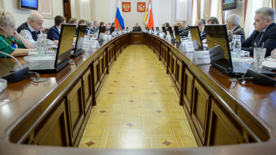 Губернатор поручил подготовить план финансирования НКО в Воронежской области