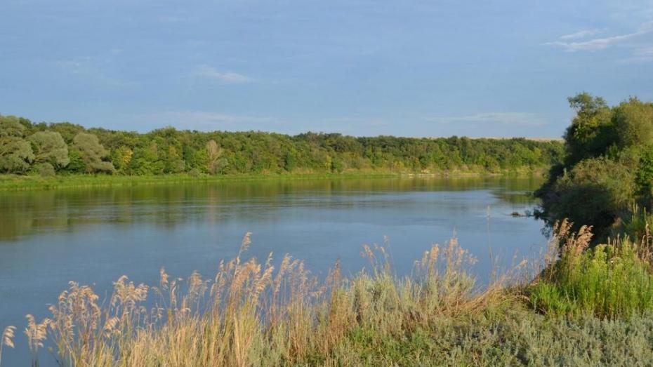 В Россошанском районе утонул прыгнувший в реку с моста мужчина