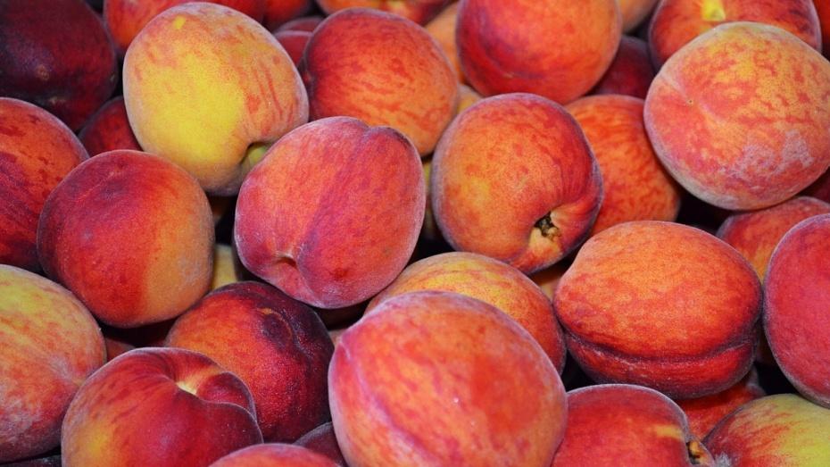 В Воронежской области уничтожили первую партию санкционных персиков
