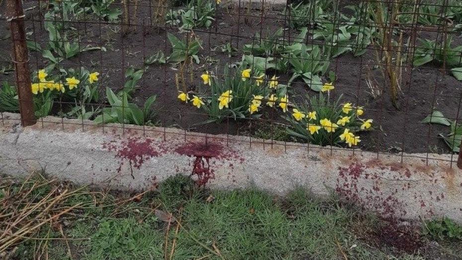 В Воронежской области напавший с вилами на соседку и ее внука пытался покончить с собой