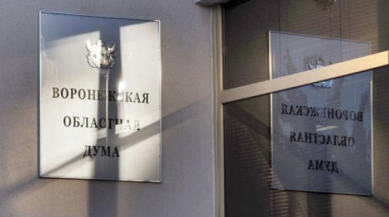 В Воронежской облдуме создадут Совет по развитию региона