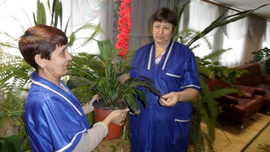 Рамонский интернат для престарелых пансионат для пожилых пушкинский