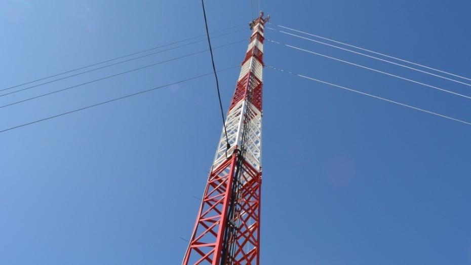 В таловском селе Бирюч установили вышку сотовой связи