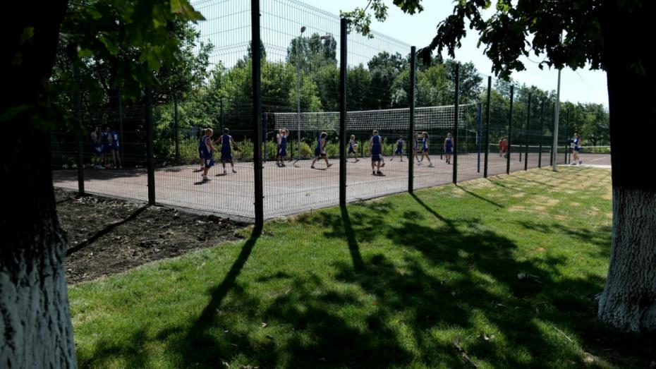 В Воронеже в 2018 году запланировали открытие 7 спортивных площадок