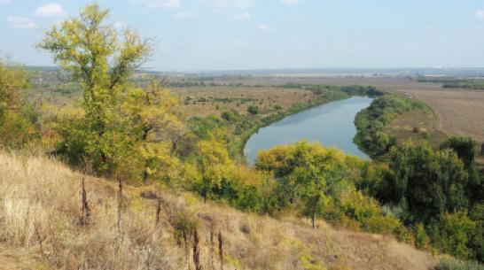 В реке Дон под Воронежем утонул рыбак
