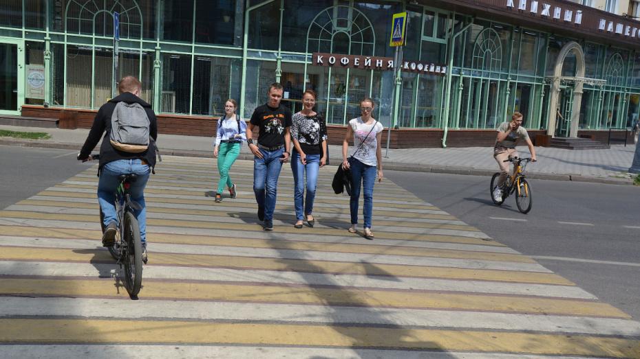 Инспекторы ГИБДД устроят облаву на пешеходов-нарушителей в Воронеже