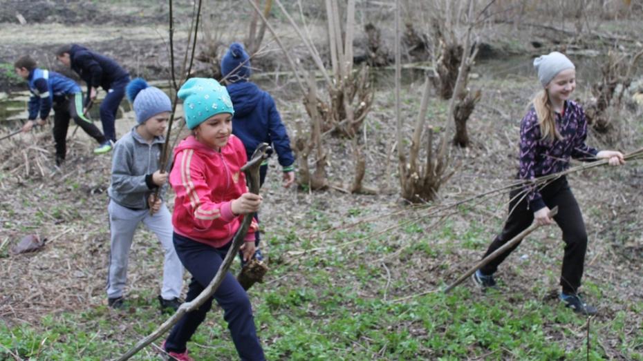Верхнемамонские школьники объявили экомарафон к 310-летию села Лозовое