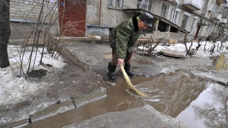 Всю неделю в Воронежской области будет аномально тепло, а к выходным погода войдет в норму