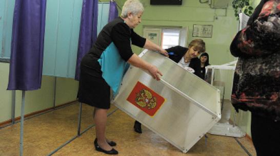 Президент подписал закон о возможности дистанционного голосования