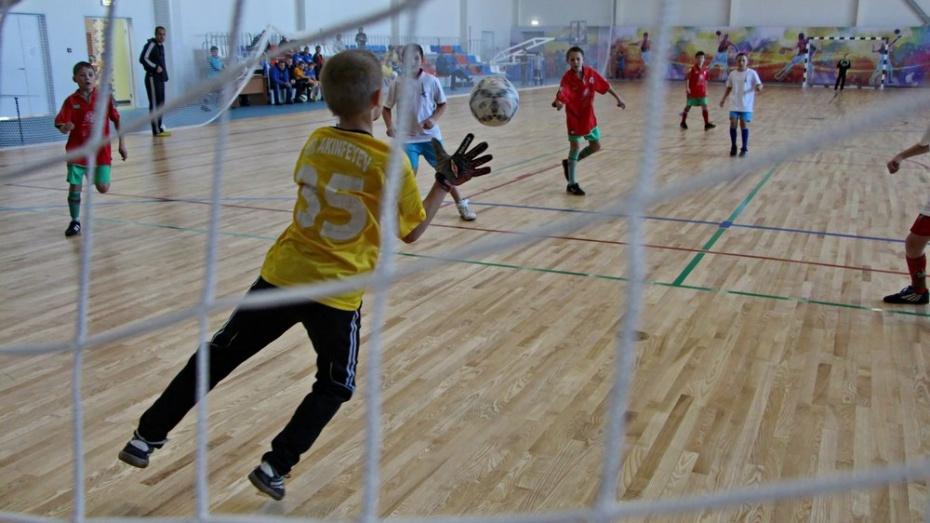 В Эртиле пройдет межрегиональный турнир по мини-футболу