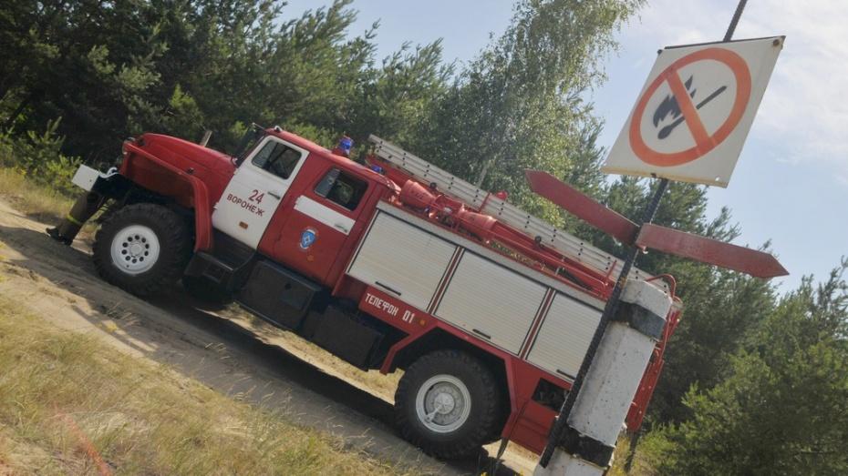 Высшая пожароопасность установлена в восьми районах Воронежской области