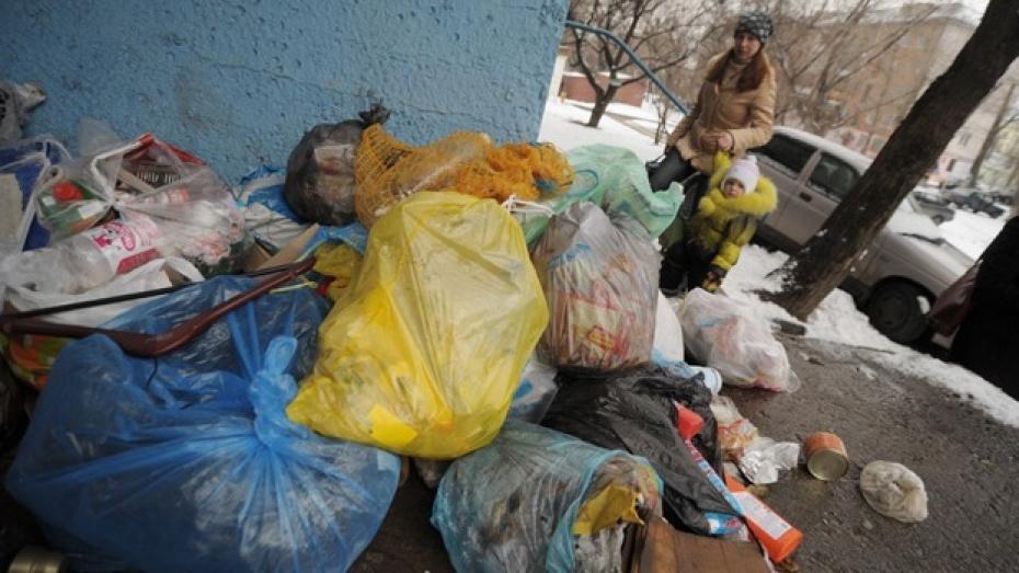 За год воронежцы выбросили 740 тысяч «Камазов» мусора